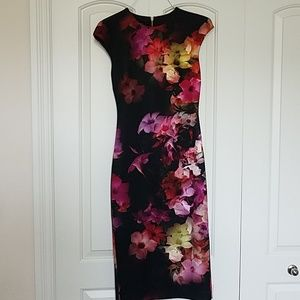 Brand New Beautiful Fitted Ted Baker Dress